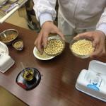 大豆と小麦