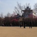 公園様子2